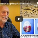 What's Really Going On? | Dr. Dietrich Klinghardt
