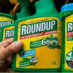 EPA sued over reapproval of key Roundup chemical