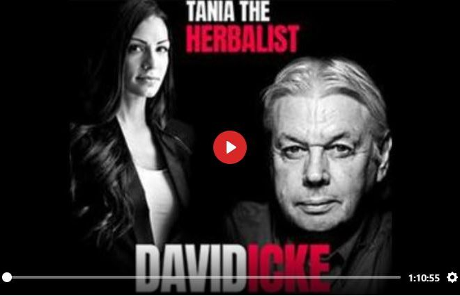 DAVID ICKE TALKS TO TANIA THE HERBALIST ABOUT COVID, 5G & THE GREAT RESET