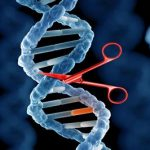 UK: Public consultation on de-regulating gene editing launched