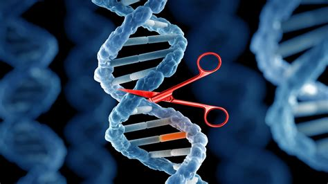 UK: Public consultation on de-regulating gene editing launched