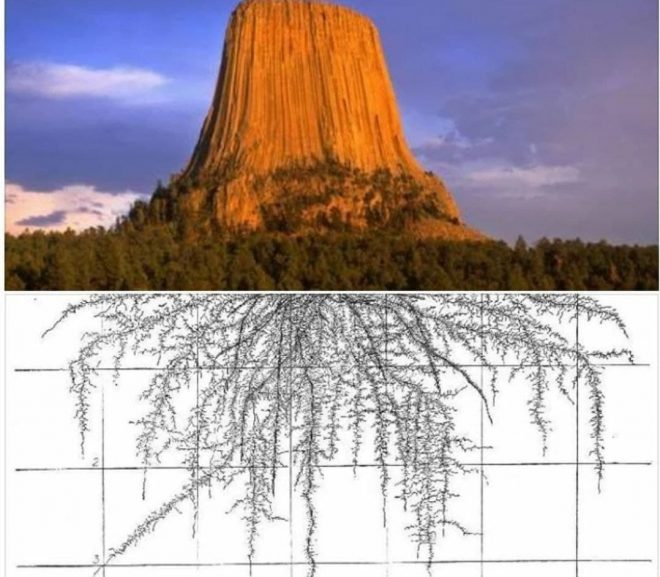 A huge and startling discovery has been made at the Devils Tower in Wyoming.